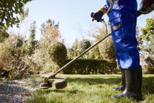 Desbrozando el jardín